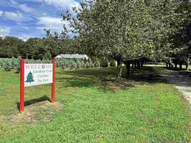 1540 Old Bishop Road, Bishop, GA 30621 (MLS #9020120) :: Cindy's Realty Group