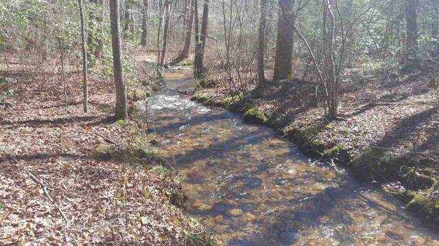 0 Wehunt Road, Blue Ridge, GA 30513 (MLS #9020337) :: Grow Local