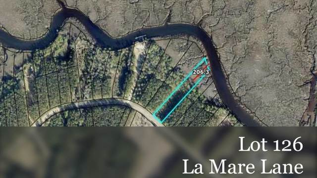 0 La Mare Lane, Waverly, GA 31565 (MLS #9022448) :: Maximum One Realtor Partners