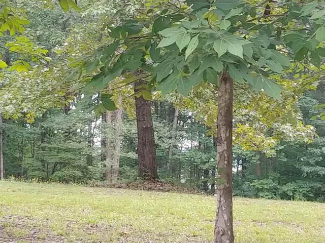 0 Russell Pointe Lane Lot 9, Elberton, GA 30635 (MLS #9027263) :: Athens Georgia Homes