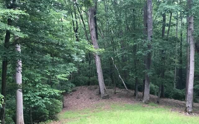 0 Laurel Brooke Lt 67, Blairsville, GA 30512 (MLS #9028023) :: Rettro Group