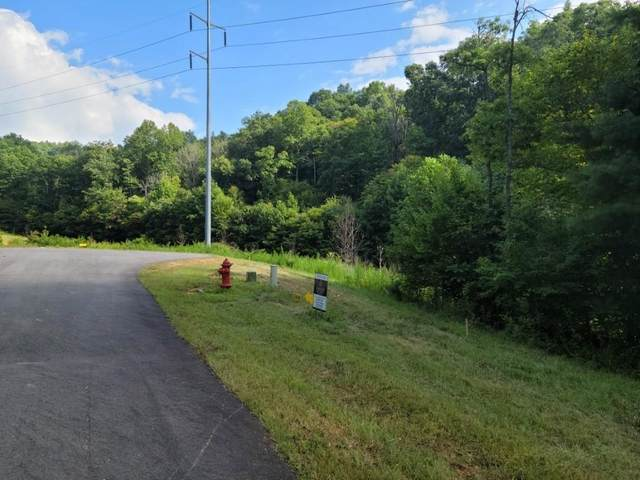 222 Rushing Waters Drive, Blairsville, GA 30512 (MLS #9028808) :: Athens Georgia Homes