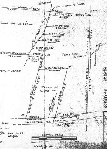 1C Lassetter Road, Sharpsburg, GA 30277 (MLS #9029988) :: Anderson & Associates