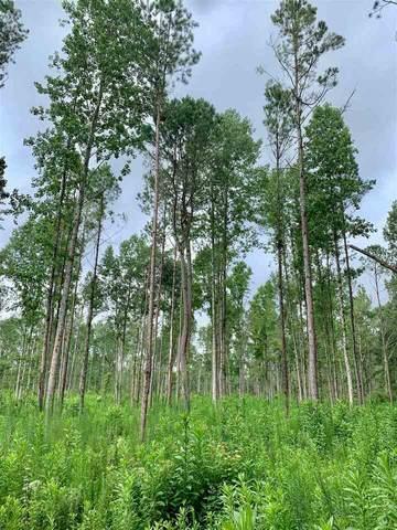 0 Drake Woods Road #1, Danielsville, GA 30633 (MLS #9030193) :: The Heyl Group at Keller Williams
