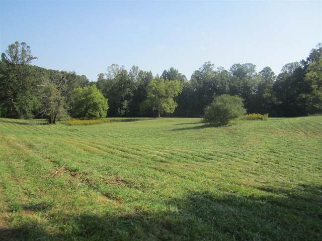 4801 Pat Colwell Road, Blairsville, GA 30512 (MLS #9030968) :: Statesboro Real Estate