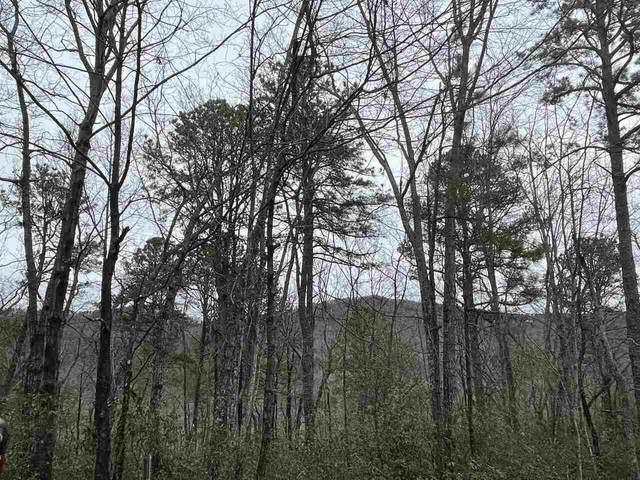 0 Whispering Dale 36-37, Clarkesville, GA 30523 (MLS #9031486) :: Athens Georgia Homes