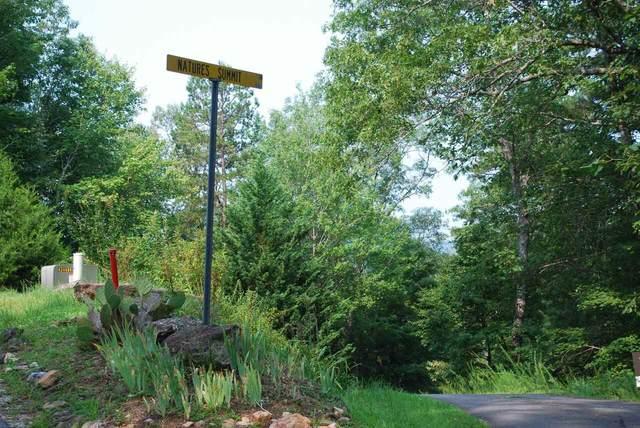 0 Brenary Lane, Lakemont, GA 30552 (MLS #9031508) :: Maximum One Realtor Partners