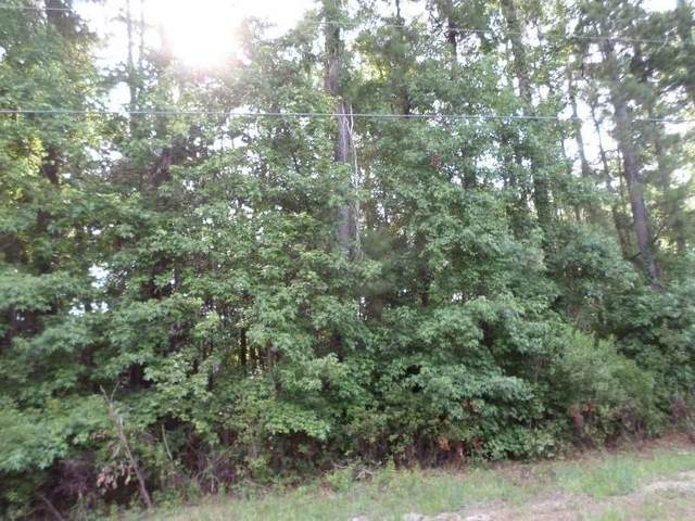 0 Sunshine Campground Road, Midway, GA 31320 (MLS #9032913) :: Rettro Group