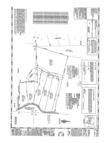 0 Pea Ridge Road Lot 3, Ball Ground, GA 30107 (MLS #9033063) :: Athens Georgia Homes