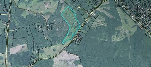 0 Shellman Bluff Road, Townsend, GA 31331 (MLS #9033256) :: Rettro Group