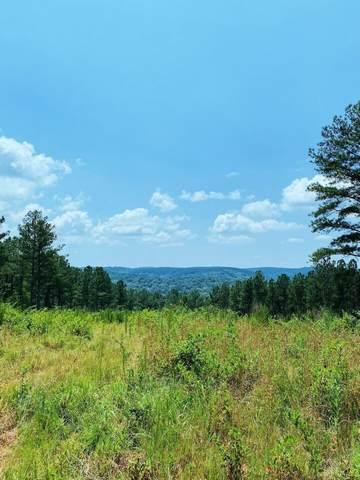 0 Big Ridge Road, Talking Rock, GA 30175 (MLS #9034540) :: Statesboro Real Estate