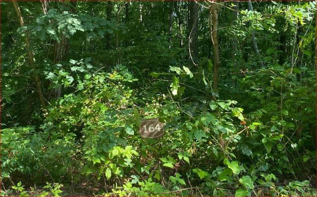 0 Trailwood Drive Lot 164, Ellijay, GA 30536 (MLS #9036385) :: Athens Georgia Homes