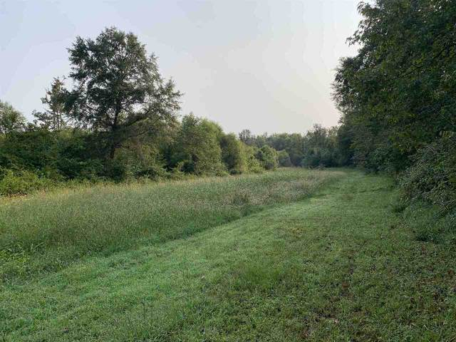 298 Murphy Road, Lagrange, GA 30240 (MLS #9049732) :: RE/MAX Eagle Creek Realty