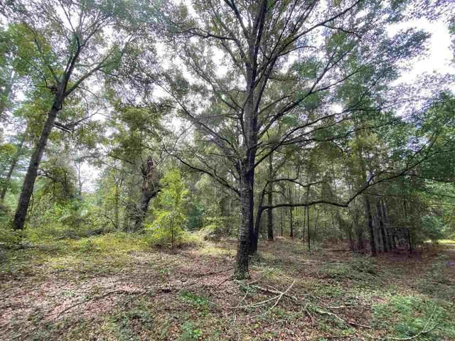 0 Alexander Farms Lot 28, Statesboro, GA 30458 (MLS #9052055) :: Better Homes and Gardens Real Estate Executive Partners