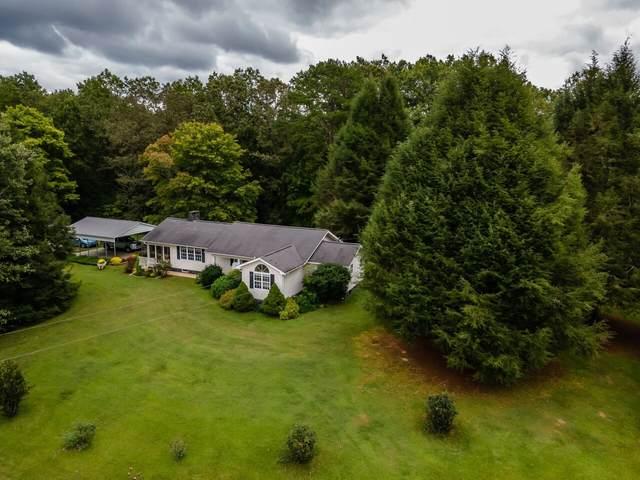 203 Pebble Lane, Blue Ridge, GA 30513 (MLS #9053814) :: RE/MAX Eagle Creek Realty