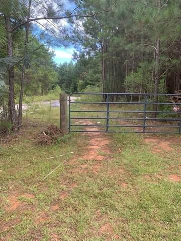 220 Butner Trail, Atlanta, GA 30349 (MLS #9055932) :: Rettro Group