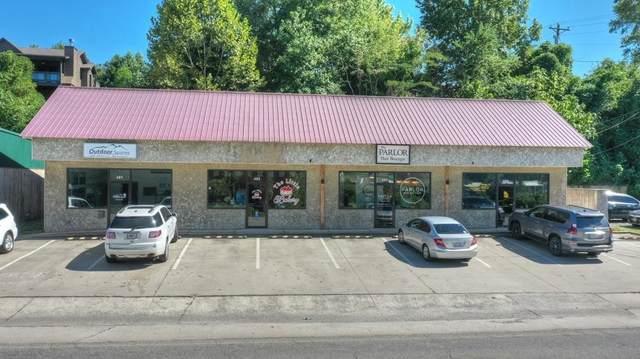 3558 East First Street, Blue Ridge, GA 30513 (MLS #9058033) :: Rettro Group