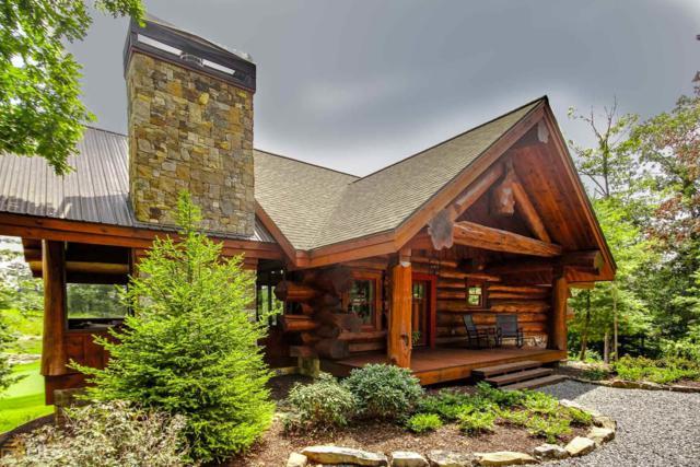 53 Trails End Way, Mineral Bluff, GA 30559 (MLS #8270966) :: Anderson & Associates