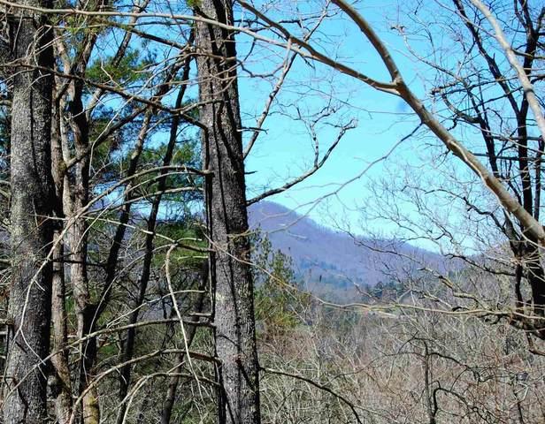 0 Mountain Ridge #234, Rabun Gap, GA 30568 (MLS #8461866) :: Team Reign