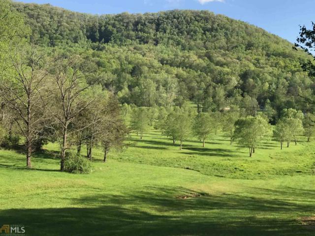 49 Green Meadows Dr, Rabun Gap, GA 30568 (MLS #8510373) :: Rettro Group
