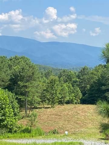 0 Reece Mountain Rd - Lt E10, Ellijay, GA 30536 (MLS #8527619) :: Rettro Group