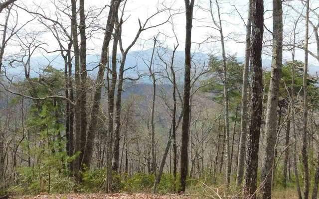 0 Deer Valley Lot 33, Warne, NC 28909 (MLS #8562153) :: Athens Georgia Homes