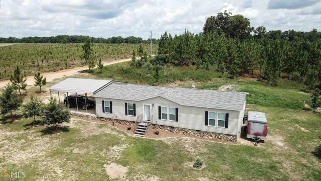20 Mcanally Rd, Hawkinsville, GA 31036 (MLS #8610543) :: Buffington Real Estate Group