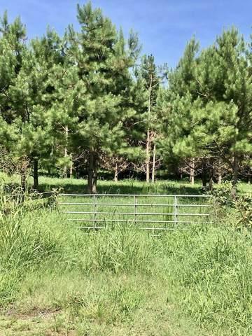 1146 Cooper Farm Rd, Nicholson, GA 30565 (MLS #8819491) :: Team Reign