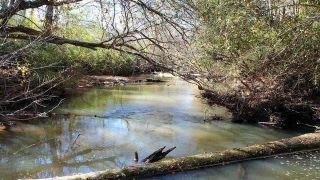 1297 Welcome To Sargent Rd 18.6+/- Acres, Newnan, GA 30263 (MLS #8888393) :: Rettro Group