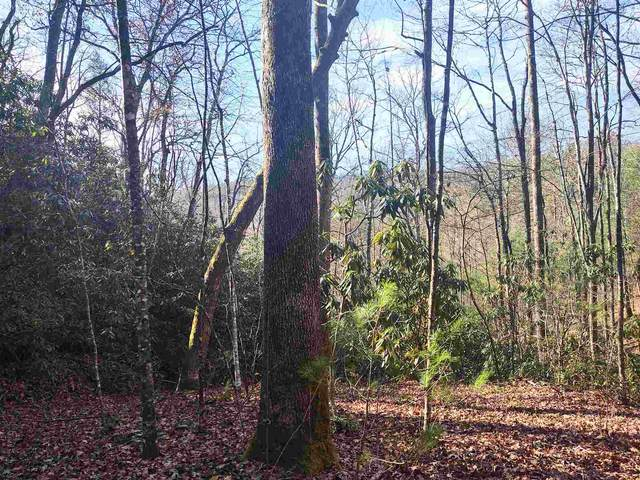 0 Beveret Branch Rd, Rabun Gap, GA 30568 (MLS #8891697) :: Buffington Real Estate Group