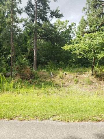1031 Brooks Road, Ideal, GA 31041 (MLS #8975710) :: Statesboro Real Estate