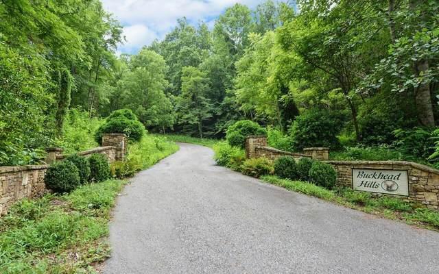 0 Buckhead Hills, Hiawassee, GA 30546 (MLS #8977669) :: Athens Georgia Homes