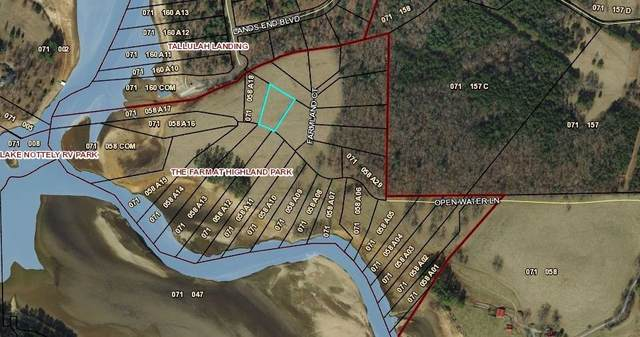 0 Open Water Lane #19, Blairsville, GA 30512 (MLS #9002024) :: Maximum One Realtor Partners