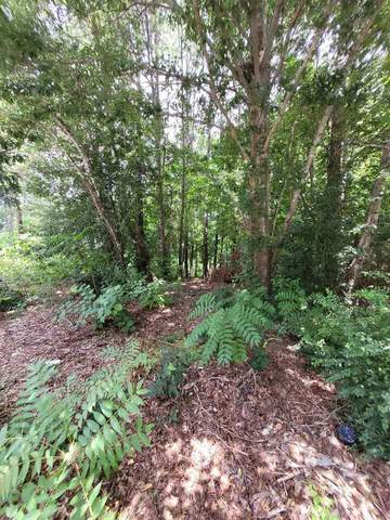1077 Crooked Creek Road, Lithonia, GA 30058 (MLS #9018355) :: Rettro Group