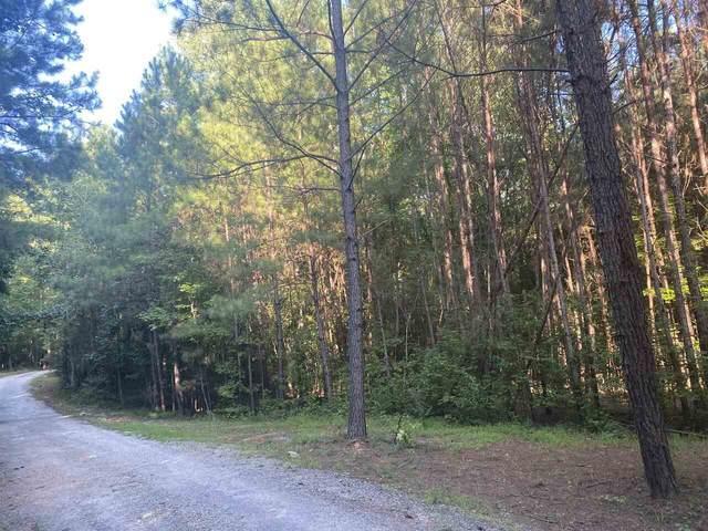731 Summer's Mckoy Road, Newnan, GA 30263 (MLS #9019075) :: Rettro Group