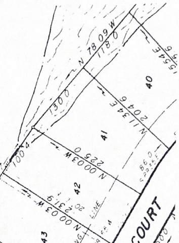 293 Hillside Court, Winder, GA 30680 (MLS #9020751) :: Rettro Group