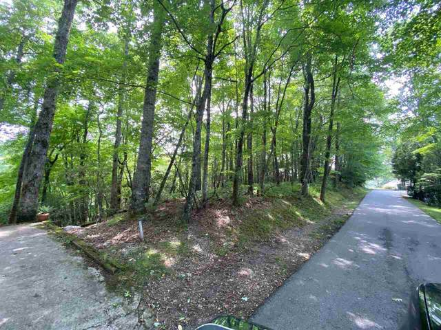 0 Pleasant Mountain Drive Lot 1, Sky Valley, GA 30537 (MLS #9027879) :: Crown Realty Group