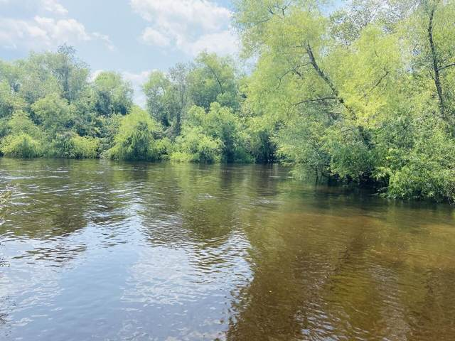 197 River Retreat, Brooklet, GA 30415 (MLS #9032366) :: Statesboro Real Estate