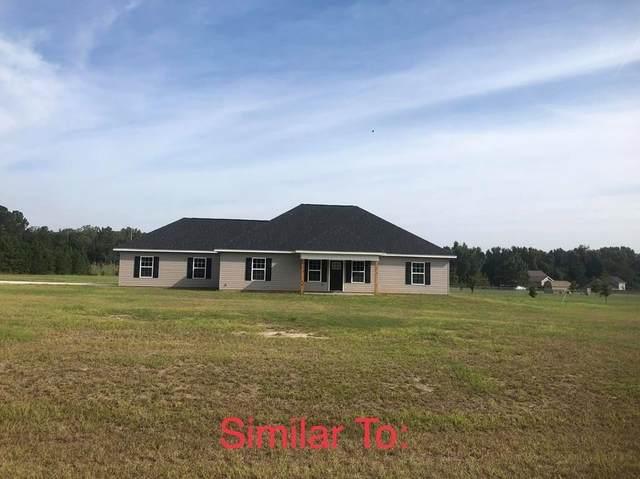 3027 Daniel Estates Lane, Dexter, GA 31019 (MLS #9062531) :: AF Realty Group