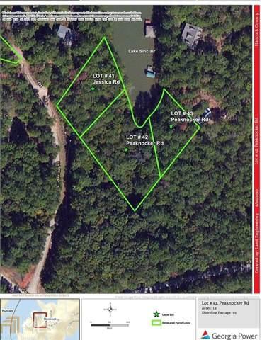 0 Peaknocker Road Lot 42, Sparta, GA 31087 (MLS #8830522) :: Crown Realty Group