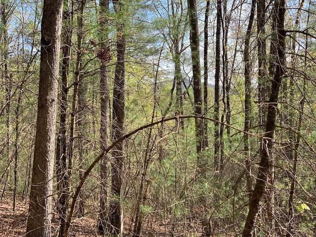 0 Dover Highlands Trl - Lt 1 Trail, Ellijay, GA 30540 (MLS #8966824) :: Rettro Group