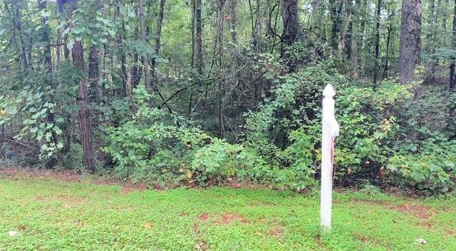 0 Huiet Drive Lot 203, Mcdonough, GA 30252 (MLS #8967973) :: Athens Georgia Homes
