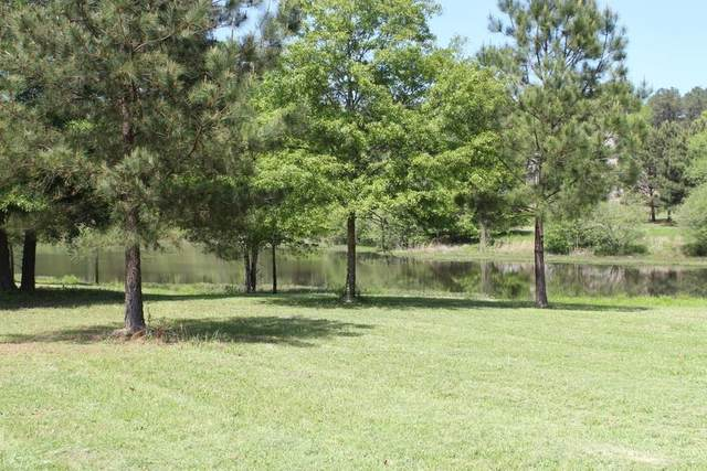 230 Autumn Lake Court, Brooks, GA 30205 (MLS #8970985) :: Anderson & Associates