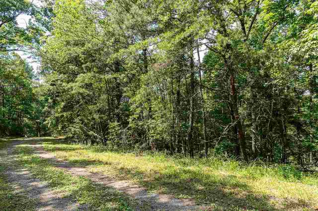 1722 Rebekah Ridge Road, Talking Rock, GA 30175 (MLS #8993704) :: Rettro Group