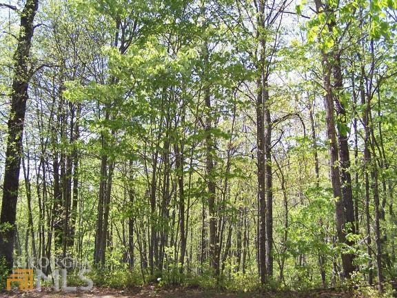 0 E Sugarbush (Upper Meadows Pt 3 - Photo 1