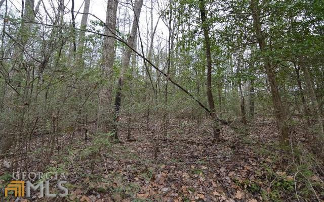 0 Hidden Lake X-7, Blairsville, GA 30512 (MLS #7601536) :: Rettro Group