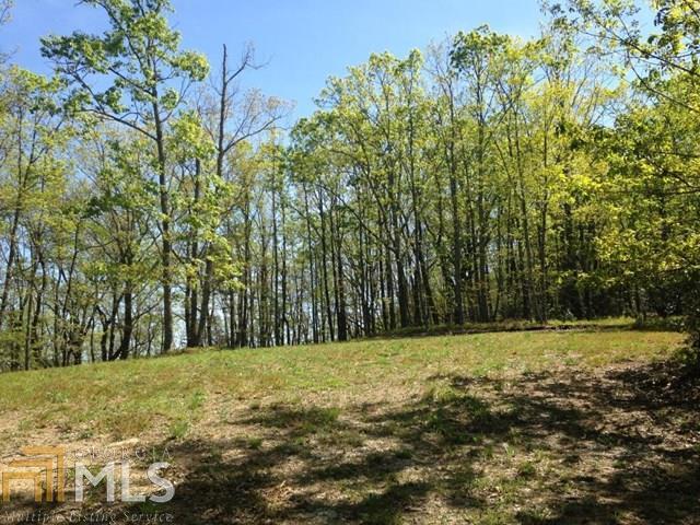 0 Hidden Meadow Rd - Photo 1