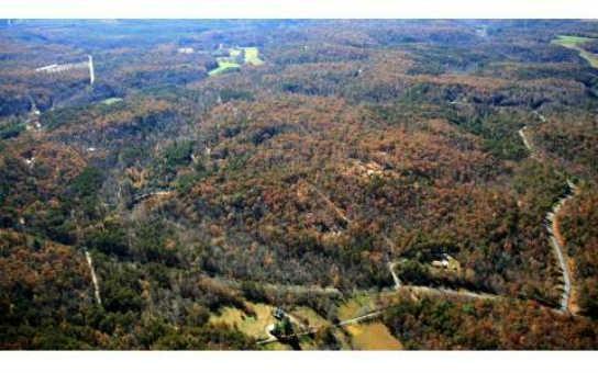 0 East Ridge 95/96, Ellijay, GA 30536 (MLS #8022249) :: Anderson & Associates