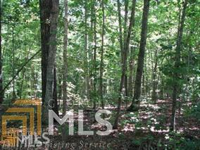 0 Lake Dr #24, Pine Mountain, GA 31822 (MLS #8075819) :: Bonds Realty Group Keller Williams Realty - Atlanta Partners