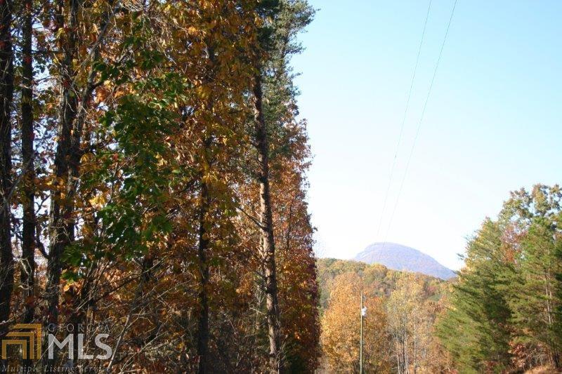 0 Rice Ridge Ct - Photo 1